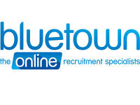 Business Development Manager / Sales Executive - IT Systems