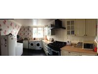 Large 5 bedroom council house swap for 4 bed
