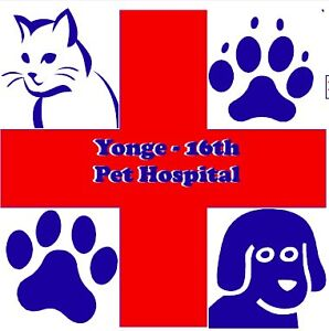 Animal Orthopedic Surgery, Dentistry,Vaccination, Spay, Neuter