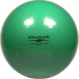 Professional Exercise Ball / fitness Ball