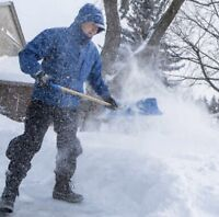 Snow shovelling in Scarborough
