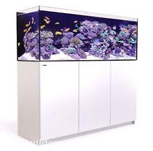 Redsea reefer 450. Marine fish aquarium / tank Pooraka Salisbury Area Preview