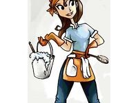 LADY CLEANER