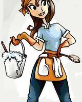 Energetic house cleaner!! With own cleaning supplies