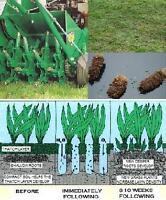 Lawn Aeration Fertilizer Over Seeding Weed Control DeThatch