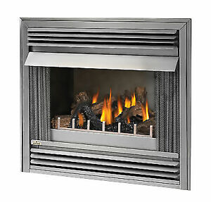 Napoleon Gss36n Riverside 36 Stainless Steel Outdoor Gas