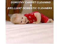9£/hour,Professional Carpet Cleaner,Cleaning Lady,Deep End of Tenancy 9£,Domestic Cleaner 9£,NO FEES