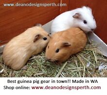 Fleece cage liners, lap pads, cuddle sacks and more..... Melbourne Region Preview