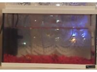 Cheap fish tank for sale