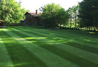 Lawn Care (Great Rates)