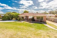 3 Bedroom House for rent in Spearwood Spearwood Cockburn Area Preview