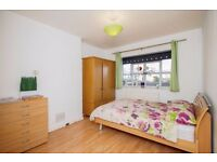 Y NEW ONLY 3-BEDROOM FLAT IN E14 SHARE WITH FRIENDLY AND CLEAN FLATMATES