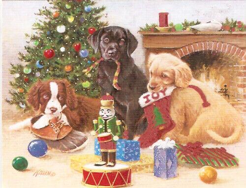Springer Labrador Lab Golden Retriever Christmas Cards Lang Box of 18 Flocked