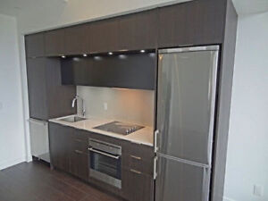 Furnished Studio Condo Downtown for Sublet February-May