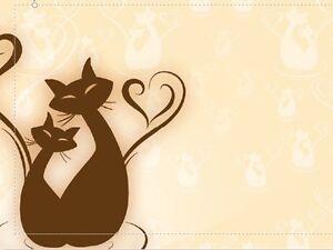 A Cats Holiday Home Maida Vale Kalamunda Area Preview