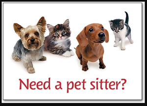 Middle aged Non smoking Pet Sitter with References & Back check