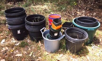 Approximately 50 misc sized plastic pots