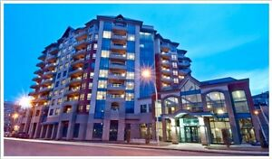 2 Bedroom Luxury Downtown Condo Available Now