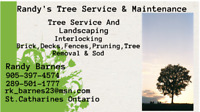 Randy's Tree Service & Maintenance
