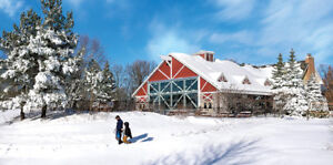 Ski Horseshoe  stay at Carriage Hills 2BR/2Bath for 7 nights