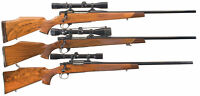 Cabela's PAL/RPAL Gun License Courses, Non-Restricted/Restricted
