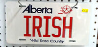 Irish Novelty Licence Plate - BLUE JAR Antique Mall