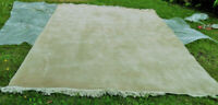 Wool 10 by 12 Area Rug