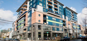1 bedroom apartment for rent in downtown Halifax - The Mary Ann