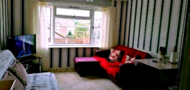 1 bed council flat swap to 2 bed flat , house, bungalow ,