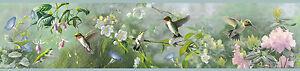 Hummingbirds above the Blooms / Birds Easy Walls Wallpaper Border HTM48531B