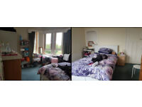 Short (only Aug) or Long term (can start from Aug/Sep) Spacious Double-Bedroom at Blackford Avenue