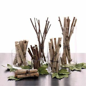 Birch wood for decoration