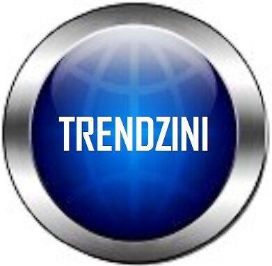 THE TRENDZINI