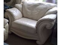 Designer Leather Armchair Niece Very Comfy great condition can arrange delivery or collect eccles