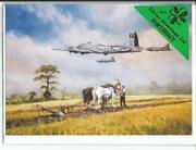 WWII Aircraft Photos