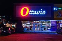 Ottavio Laval recherche cuisiniers à temps plein!