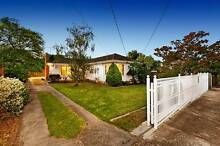 SOMETIMES IT SPECIAL!!!! Malvern East Stonnington Area Preview
