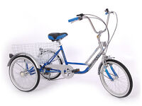 Childs & Adult Tricycles Childrens Trike Special Needs Disability