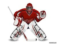 Goalie Wanted
