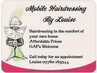 Mobile Hairdresser/Hairdressing . Southsea , North End , Copnor , Milton and Surrounding Areas