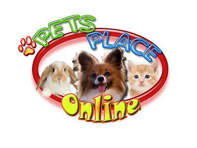 Pets Place Online