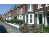 1 bedroom flat in Cullercoats village close to Metro, beach, restaurants and cafes. No agency fees!