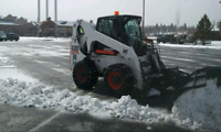 PROFESSIONAL SNOW SERVICES