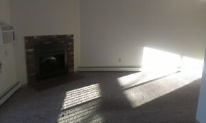 2 BD Apartment w/ Fireplace!! Pets Welcome!!