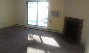 Beautiful 2 bedroom apartment- Spacious - Storage