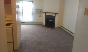 Beautiful 1 bedroom apartment- Spacious - Storage