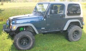 Jeep TJ Rebuilt From Frame Up 2003 Tons Expensive Extras