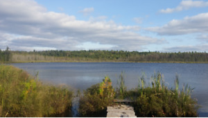 1.65 Acre Property overlooking Young's Lake