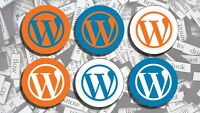Wordpress expert can fix your website!