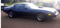 1981 Pontiac Firebird with Trans Am package applied